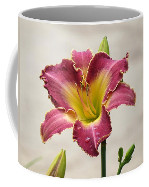 Cherokee Heritage Daylily Coffee Mug featuring the photograph Daylily Delight by MTBobbins Photography