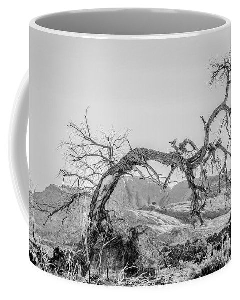 Trees Coffee Mug featuring the photograph Dead Old Tree Near Monument Valley Arizona by Alex Grichenko