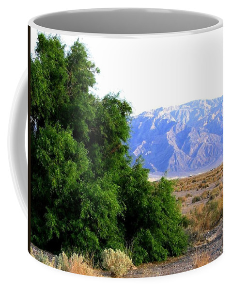 Death Valley Coffee Mug featuring the photograph Death Valley 2 by Will Borden