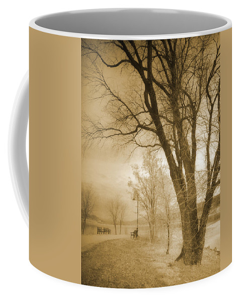 Trees Coffee Mug featuring the photograph December Glow by Tara Turner