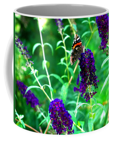 Butterfly Bush Coffee Mug featuring the photograph Decisions... by Brittany Horton