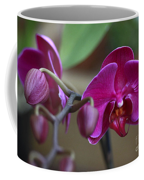 Flower Coffee Mug featuring the photograph Deep Pink by Deborah Benoit
