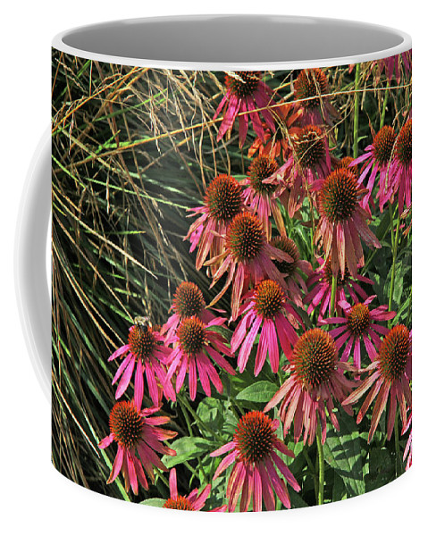 Deep Pink Echinacea Straw Flowers Green Leaf And Grass Background Coffee Mug featuring the photograph Deep Pink Echinacea Straw Flowers Green Leaf And Grass Background 2 9132017 by David Frederick