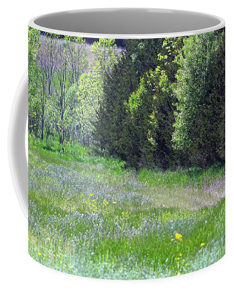 Illinois Coffee Mug featuring the photograph Deer In Clearing by Alan Look