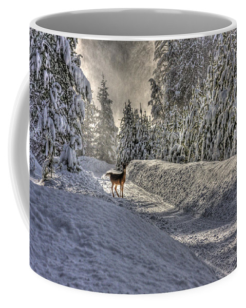 Landscape Coffee Mug featuring the photograph Deer In Snow by Lee Santa