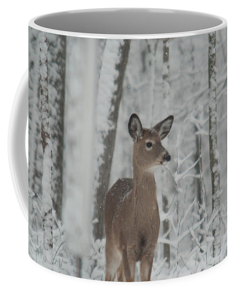 Deer Coffee Mug featuring the photograph Deer In The Snow by Douglas Barnett