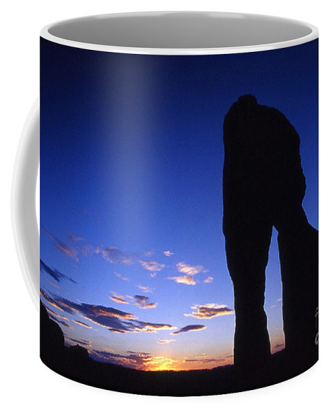 Delicate Arch Coffee Mug featuring the photograph Delicate Arch At Twilight by Sven Brogren
