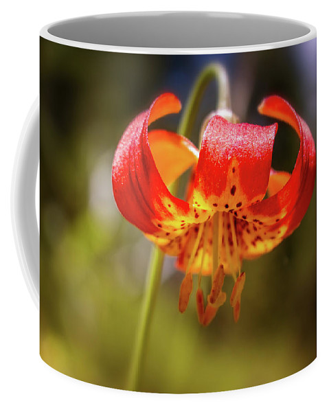 Lilium Coffee Mug featuring the photograph Delicate Beauty by Marnie Patchett
