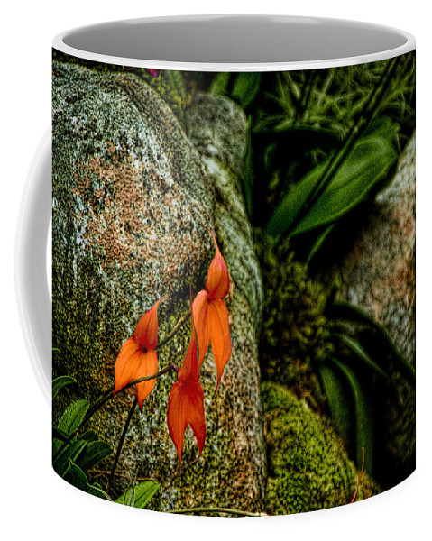 Orange Coffee Mug featuring the digital art Delicate Orange by Ches Black