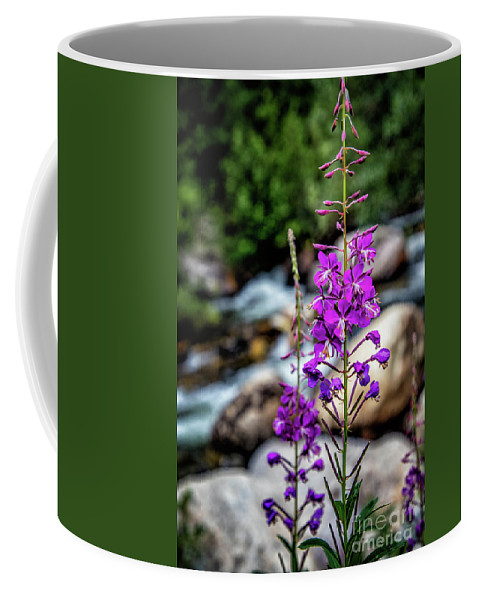 Coffee Mug featuring the photograph Delicate Purple by Erin Schwartzkopf