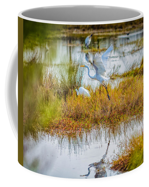 Birds Coffee Mug featuring the photograph Departure by John M Bailey