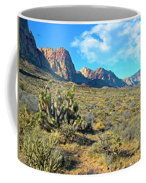 Frank Wilson Coffee Mug featuring the photograph Desert Beauty by Frank Wilson