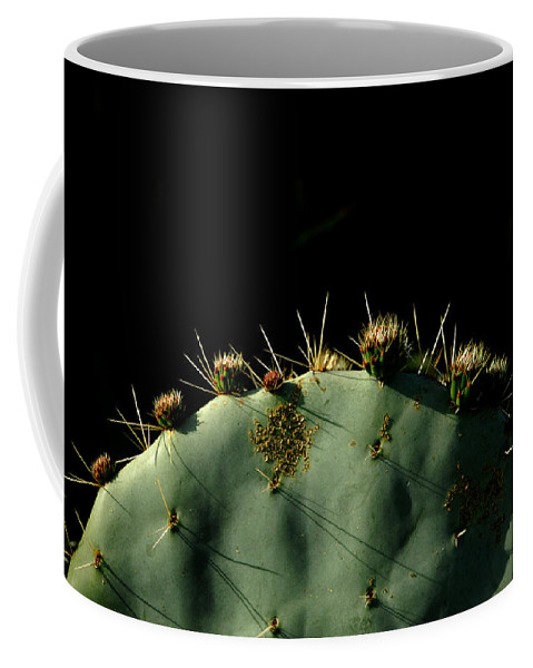 Cactus Coffee Mug featuring the photograph Desert Landscape by Donna Blackhall