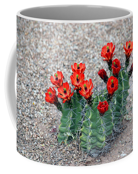 Desert Queen Coffee Mug featuring the photograph Desert Queen by Susanne Van Hulst