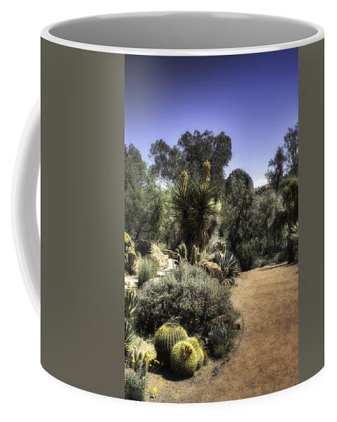 America Coffee Mug featuring the photograph Desert Walkway by Lynn Geoffroy