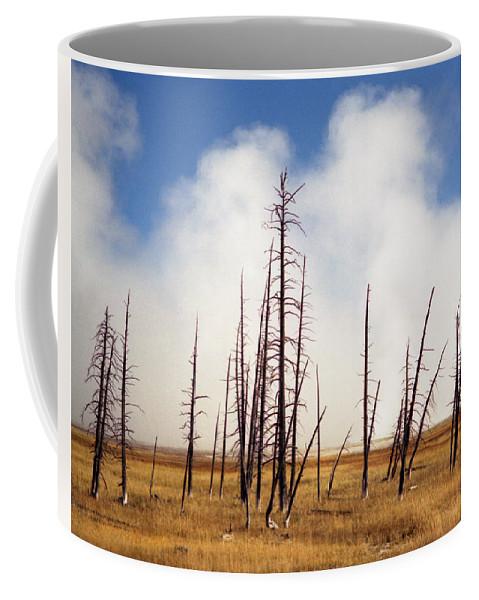 Desolation Coffee Mug featuring the photograph Desolation by Richard Rizzo
