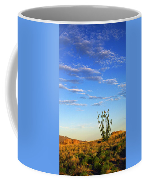 Desperado Coffee Mug featuring the photograph Desperado by Skip Hunt