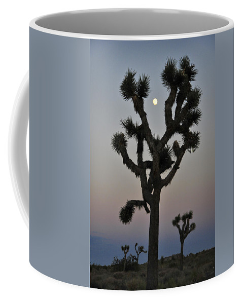 Destiny Coffee Mug featuring the photograph Destiny by Skip Hunt