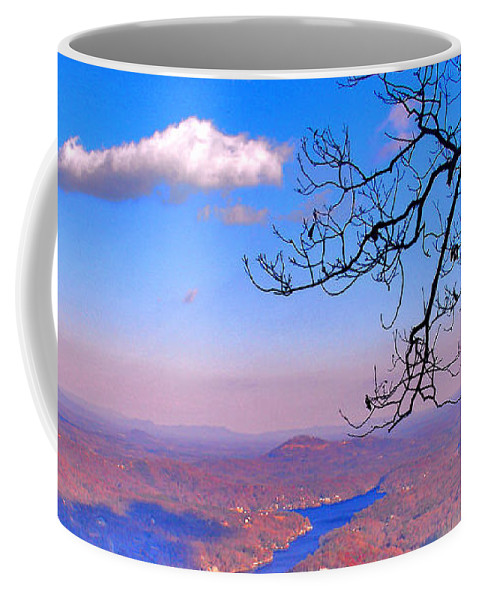 Landscape Coffee Mug featuring the photograph Detail From Reaching For A Cloud by Steve Karol