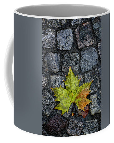 Nature Coffee Mug featuring the photograph Deville by Skip Hunt