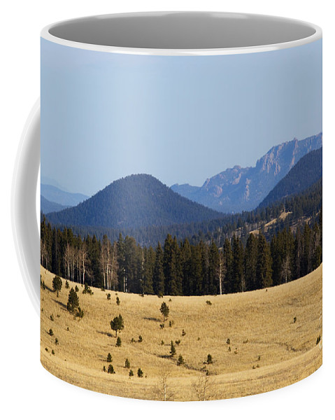 Devil's Head Coffee Mug featuring the photograph Devil's Head Fire Tower In The Pike National Forest by Steve Krull