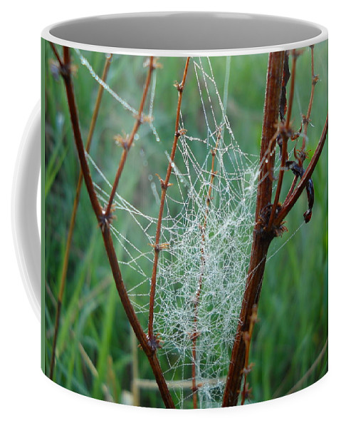 Dew Coffee Mug featuring the photograph Dew Covered Spider Web by Kent Lorentzen
