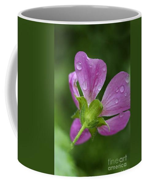 Flower Coffee Mug featuring the photograph Dew Kisses by Deborah Benoit