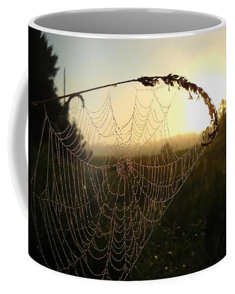 Dew Coffee Mug featuring the photograph Dew On Spider Web At Sunrise by Kent Lorentzen