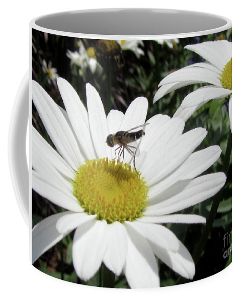 Flower Coffee Mug featuring the photograph Dinner by Donna Brown