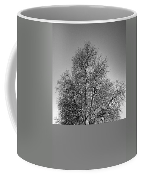 Black And White Coffee Mug featuring the photograph Discovery Park No.1 by David Patterson
