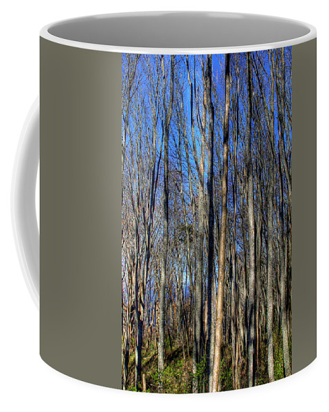 Photo Coffee Mug featuring the photograph Discovery Park No.3 by David Patterson