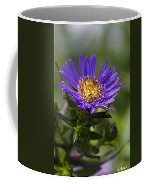 Flower Coffee Mug featuring the photograph Display Of Softness by Deborah Benoit
