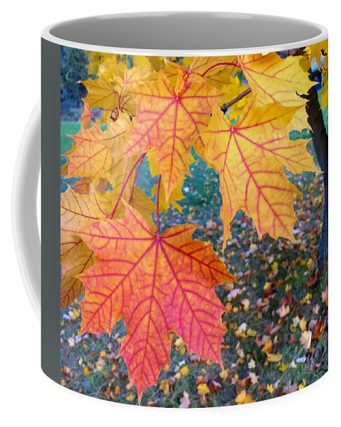 #distinctivemapleleaves Coffee Mug featuring the digital art Distinctive Maple Leaves by Will Borden