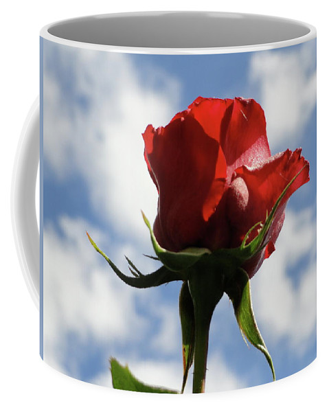Rose Coffee Mug featuring the photograph Diva Rose by Shannon Grissom