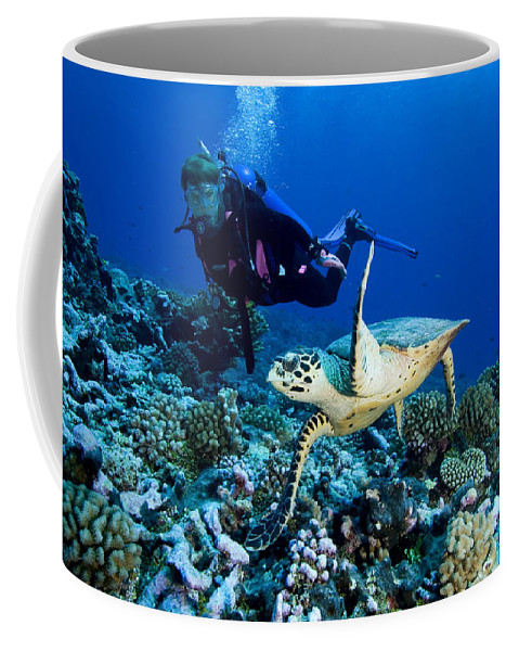 One Animal Coffee Mug featuring the photograph Diver And Green Sea Turtle Chelonia by Tim Laman
