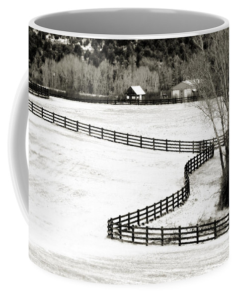 Americana Coffee Mug featuring the photograph Dividing Lines by Marilyn Hunt