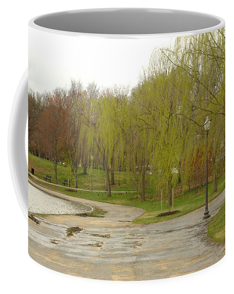 Landscape Park Washington Willow Tree Lake Coffee Mug featuring the photograph Dnrf0401 by Henry Butz