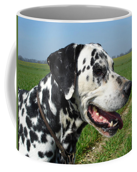Dog Coffee Mug featuring the photograph Dodgy The Dalmation by Susan Baker