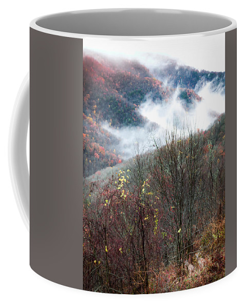 Autumn Deer Coffee Mug featuring the photograph Doe On Autumn Ridge by Karen Wiles