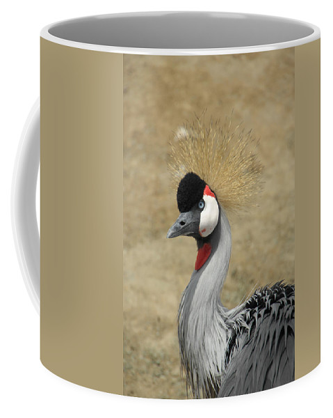 Bird Coffee Mug featuring the photograph Does My Hair Look Ok by Donna Blackhall