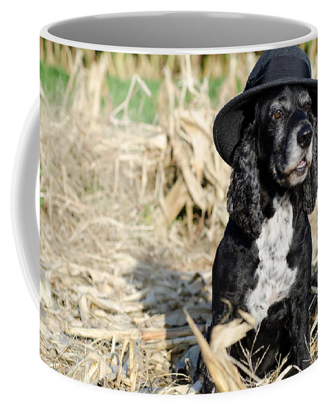 Dog Coffee Mug featuring the photograph Dog With A Hat by Mats Silvan