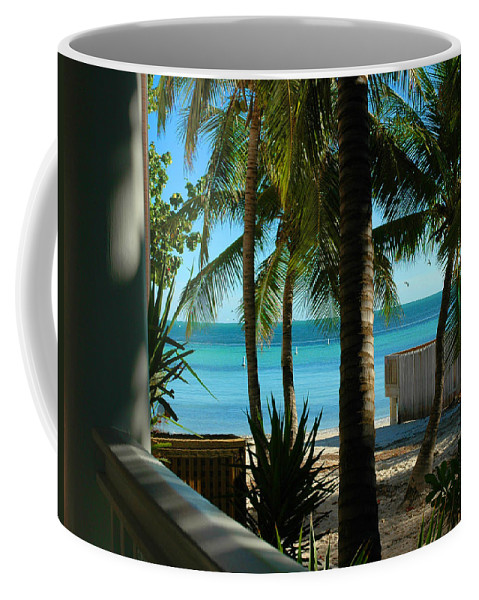 Dogs Beach Coffee Mug featuring the photograph Dog's Beach Key West Fl by Susanne Van Hulst