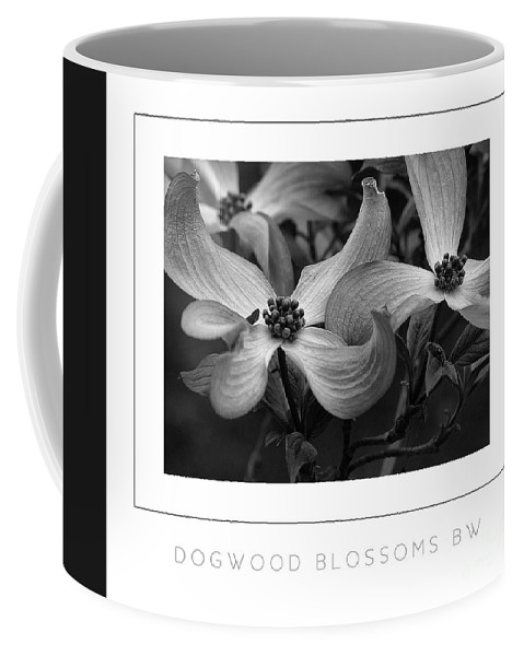 Dogwood Coffee Mug featuring the photograph Dogwood Blossoms Bw Poster by Mike Nellums