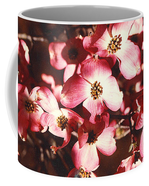 Dogwood Coffee Mug featuring the photograph Dogwood Harmony by Nancy Mueller