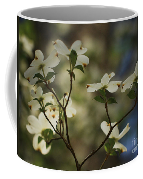 Spring Flowers Coffee Mug featuring the photograph Dogwoods by Kim Henderson