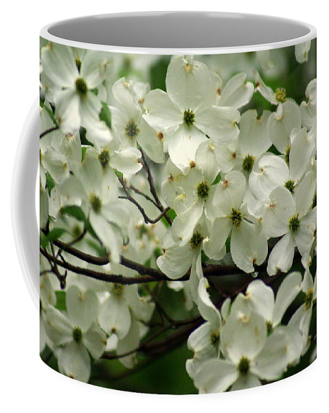Dogwood Coffee Mug featuring the photograph Dogwoods by Marty Koch