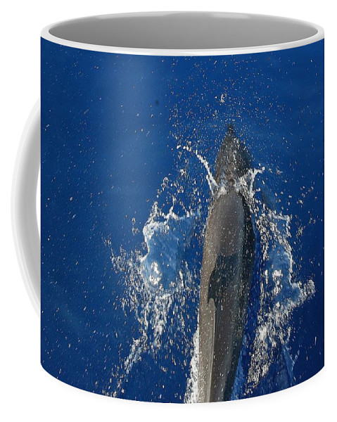 Dolphin Coffee Mug featuring the photograph Dolphin by J R Seymour