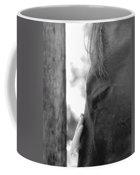 Horse Coffee Mug featuring the photograph Don't Be Afraid by Donna Blackhall