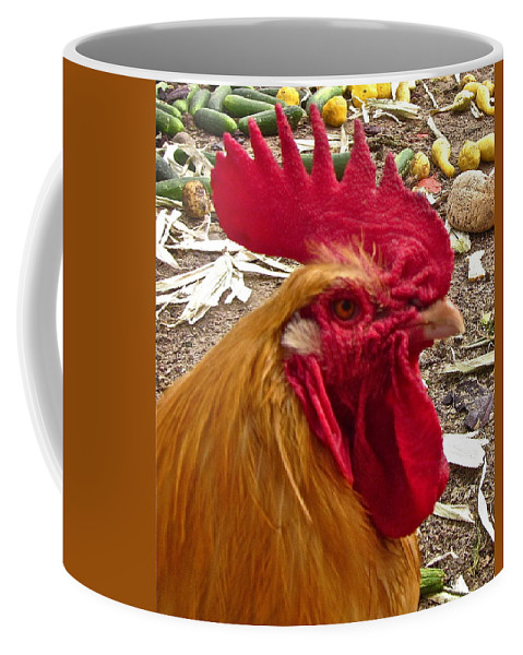 Rooster Photograph Coffee Mug featuring the photograph Dont Even Think About It by Gwyn Newcombe