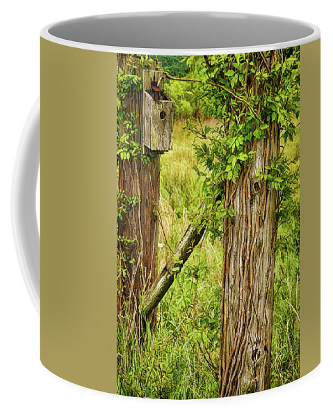 Birdhouse Coffee Mug featuring the photograph Don't Fence Me In by Priscilla Burgers